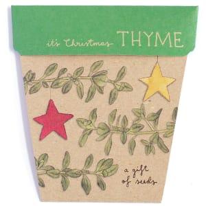 Christmas Thyme Seeds