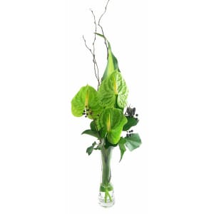 Antherium Bud Vase