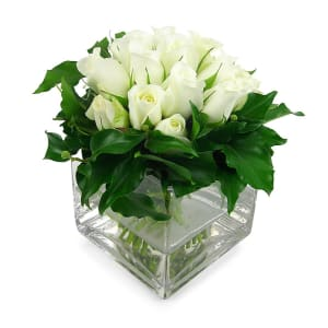White Rose Vase