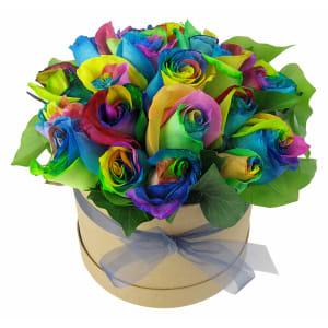 So Fancy - Rainbow Roses
