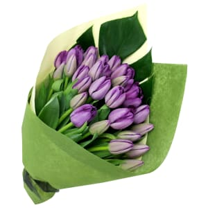Mother's Day Purple Tulips
