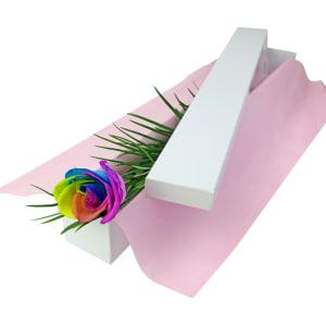 Single Rainbow Rose