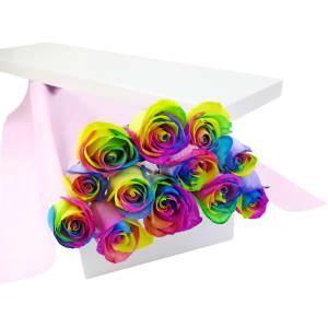 12 Elegant Rainbow Roses