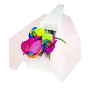 Rainbow Rose Trio