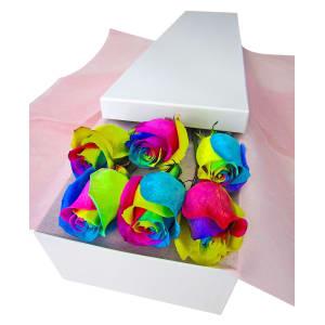6 Elegant Rainbow Roses