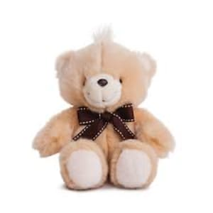 Forever Friends Classic Bear