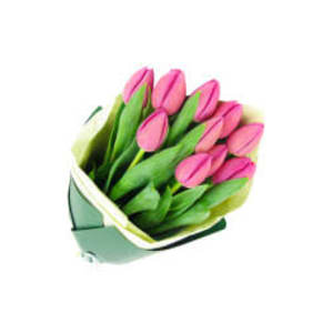 Mothers Day Pink Tulips