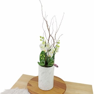 Polished Orchids - White