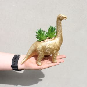 Golden Fossil - Brontosaurus