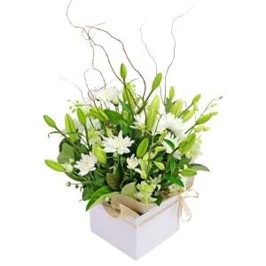 Botanique - White