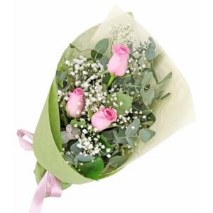 Rambling Soft Pink Roses