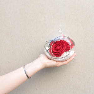 Preserved Red Rose Orb