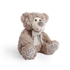 Luke Teddy Bear 25CM