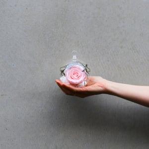 Preserved Pink Rose Orb