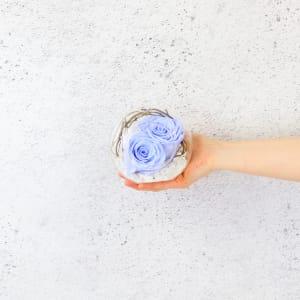 Preserved Blue Rose Orb