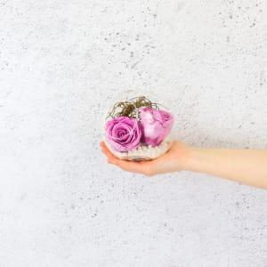 Preserved Purple Rose Orb