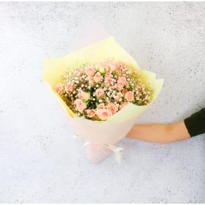 Sherbet Blooms