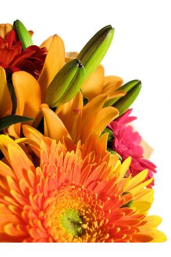 Fun, Bright Bouquet - Standard