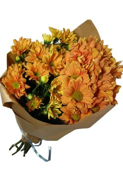 Chrysanthemums - Deluxe