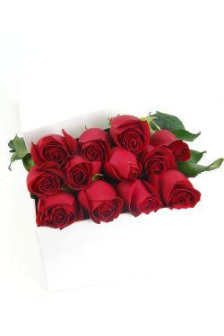 12 Elegant Roses - 12 Roses (One Dozen)