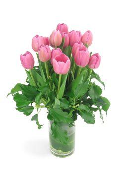 Tulip vase - Standard