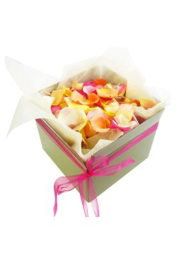 Mixed Rose Petals - Large - Deluxe