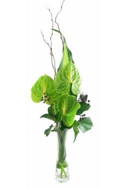 Antherium Bud Vase - Standard