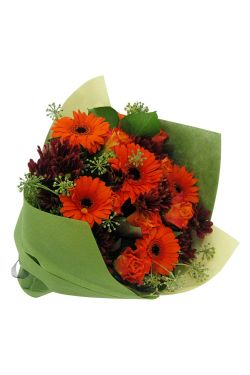 Persimmon Punch Posy - Standard