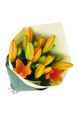 Orange Lily bunch - Standard