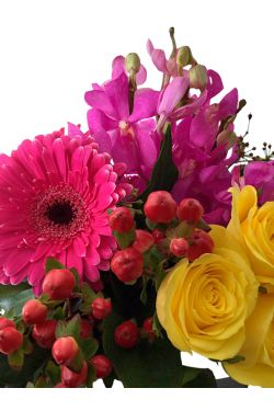 Cheerful Arrangement - Standard