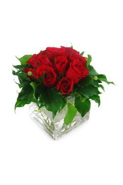 Red Rose Vase - Standard