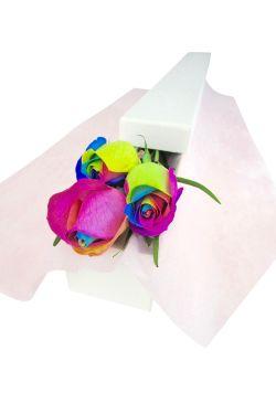 Rainbow Rose Trio - Standard