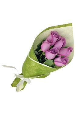 Mauve Roses - Standard