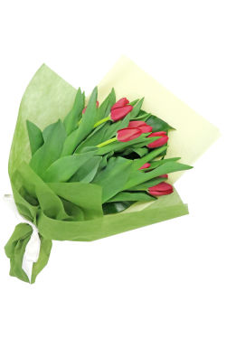 Red Tulip Bunch - Standard