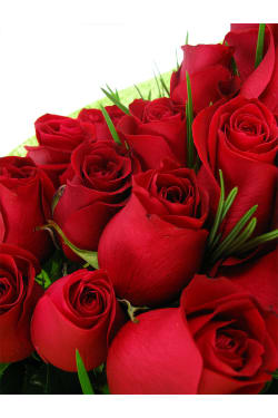 18 Red Roses Bouquet - 18 Roses