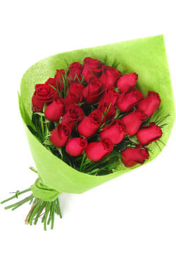 24 Red Roses - Standard