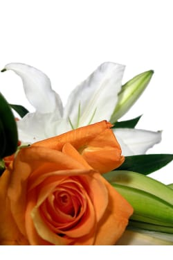 Roses and Oriental Lilies - Deluxe