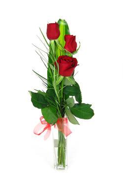 3 Roses in a Vase - Standard