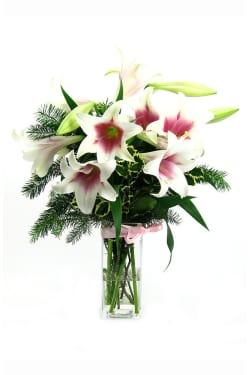 Festive Xmas Lilies - Standard
