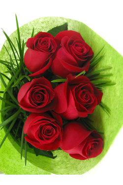 6 Roses Bouquet - 6 Roses (Half Dozen)