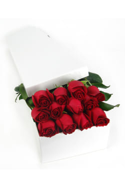 Valentine's 12 Elegant Roses   - 12 Roses (One Dozen)