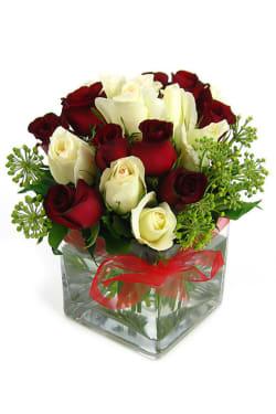 Valentine's 18 Rose Vase - Deluxe