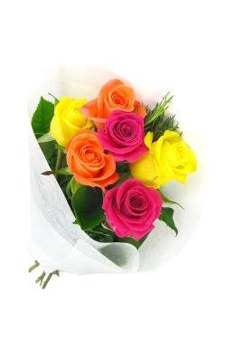 Valentine's 6 Just Roses - Standard