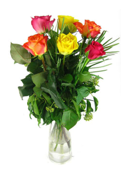 Valentine's mixed rose vase - 6 Roses (Half Dozen)