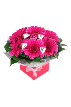 Gerbera and Chocolate Box - Standard