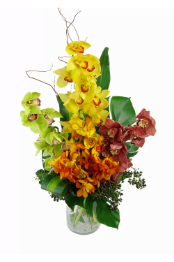 Mixed Orchid Vase - Standard