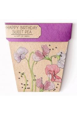 Sweet Pea - Happy Birthday - Standard