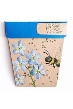 Forget Me Not Seeds - Standard