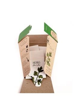 Trio of Herb Seeds - Standard