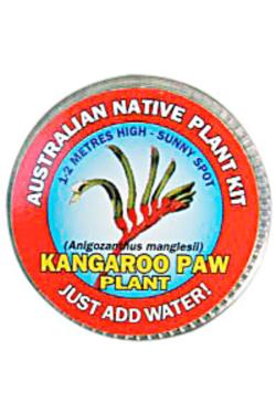 Kangeroo Paw Seed Kit - Standard